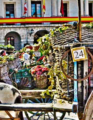 """""""Fiesta de la vendimia. Toro. Zamora. Turismo. Vino. Castilla y León"""""""