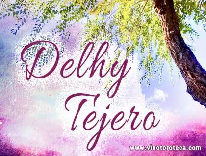 delhy_tejero_pintora_toro_zamora-turismo
