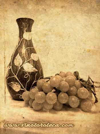 """""""Exposicion vinicola nacional 1877. Vino. Toro. Turismo"""""""