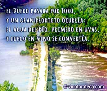 rio-duero-puente-toro-zamora-turismo